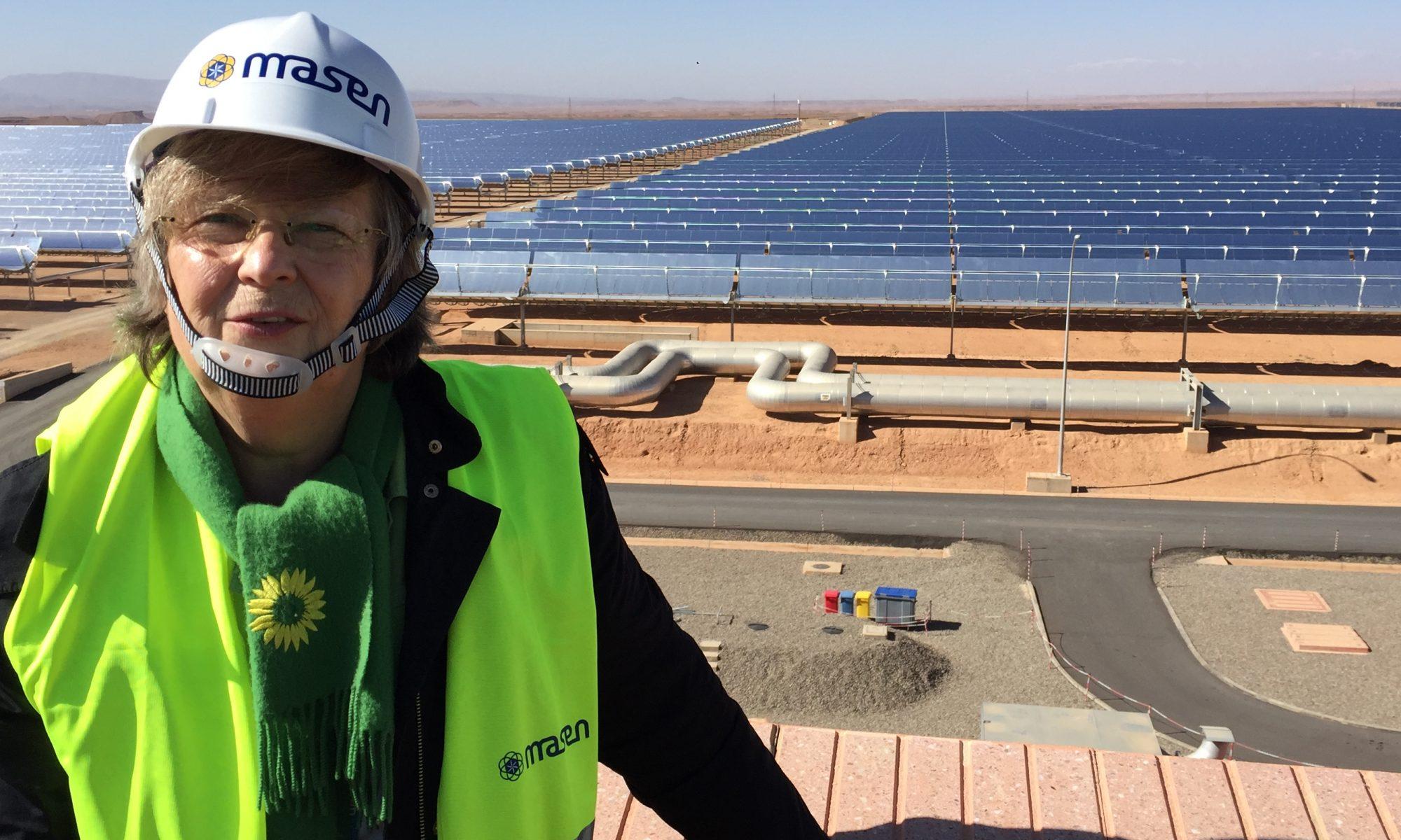 Baerbel in the solar desert